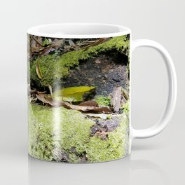 Rainforest Ferns & Moss Coffee Mug