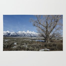 Grand Tetons from Gros Ventre Rug
