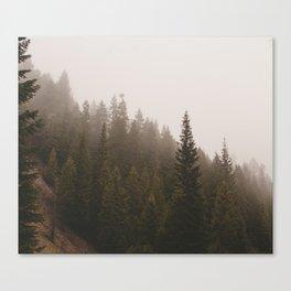 Elevation Drop Canvas Print
