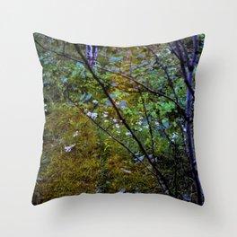 In Between Seasons Throw Pillow