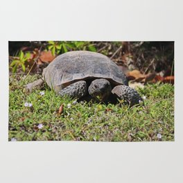 Grazing Gopher Tortoise Rug