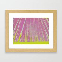 Shadows and Tall Trees Framed Art Print