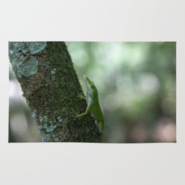 Green Anole Rug