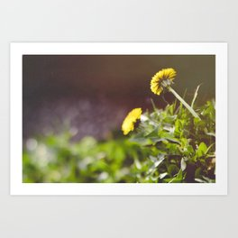 Not Just a Weed Art Print