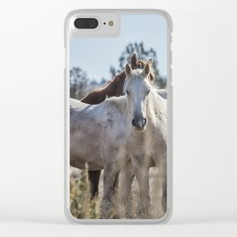 Traveler and His Bachelor Band Clear iPhone Case