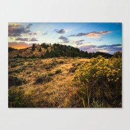 Wyoming Wildflowers Sunset Canvas Print