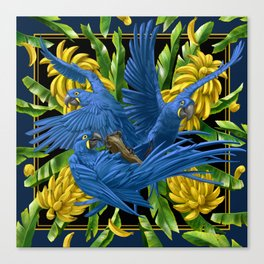 Hyacinth Macaws and bananas Stravaganza (black background). Canvas Print