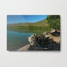Driftwood On Lakeshore Metal Print