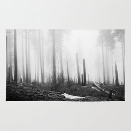 Misty Day at Sequoia National Park Rug