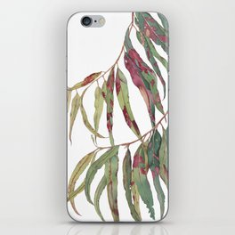 A touch of red - watercolour of eucalyptus branch iPhone Skin