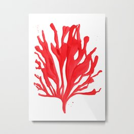 Red Coral no. 2 Metal Print
