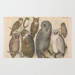 Naturalist Owls Rug
