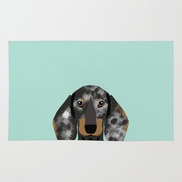 Doxie Dachshund merle dapple dog cute must have dog accessories dog gifts cute doxies dachshunds des Rug