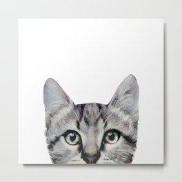 Cat, American Short hair, illustration original painting print Metal Print