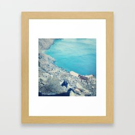 Goats on the Aegean Framed Art Print