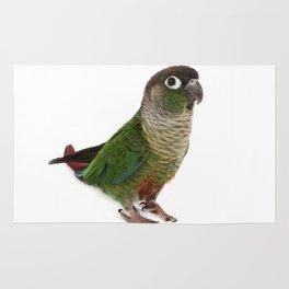 Zeph - Green Cheek Conure Rug