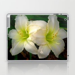 Glowing white daylily flowers - Hemerocallis Indy Seductress Laptop & iPad Skin