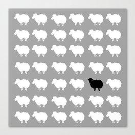 Black sheep Canvas Print