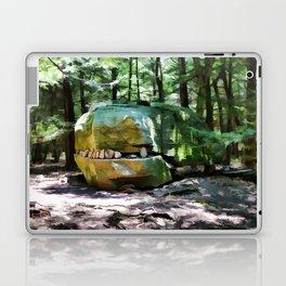 Alligator Rock 1 Laptop & iPad Skin