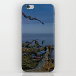 Branched Seascape iPhone Skin