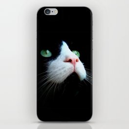 Dark cat iPhone Skin