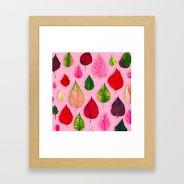 Plants on Pink Framed Art Print