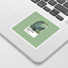 Pantone Series – Banana Leaf Sticker