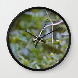 Growth and Transformation Wall Clock