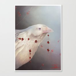 White Shadows: The Crow Canvas Print