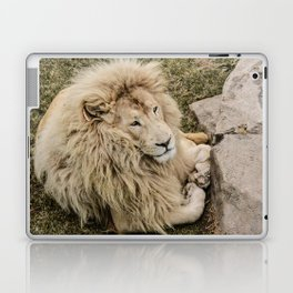 Lion of Judah Laptop & iPad Skin