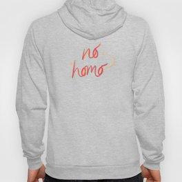 no homo Hoody