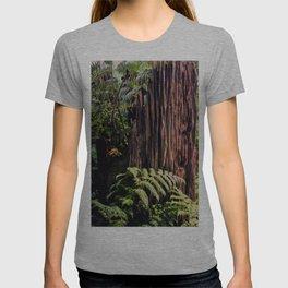 Rotting Wood T-shirt
