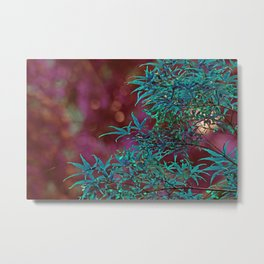 Surreal Japanise Ahorn Tree Metal Print
