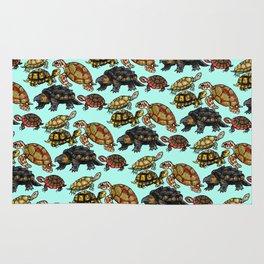Turtle Skin Rug