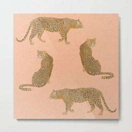 sunset leopards Metal Print