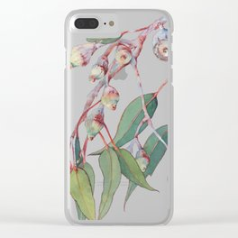Australian eucalyptus tree branch Clear iPhone Case
