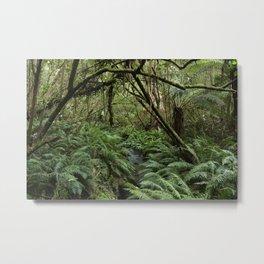 Australian Jungle Metal Print
