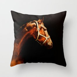 Horse Wall Art, Horse Portrait Over a Black background, Horse Photography, Closeup Horse Head Throw Pillow