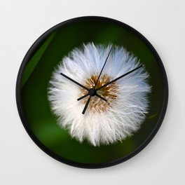 Softness Dandelion Wall Clock