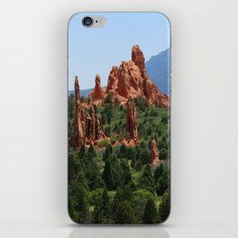 Cathedral Valley iPhone Skin