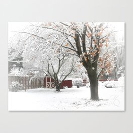 The Backyard Under Three Inches Canvas Print