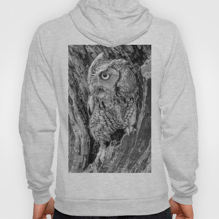 Echo the Screech Owl by Teresa Thompson Hoody