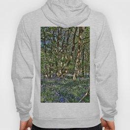 Bluebells in the woods Hoody