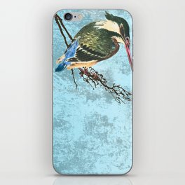 Watching the river iPhone Skin