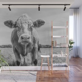 Animal Photography | Cow Portrait Minimalism | Farm animals | black and white Wall Mural