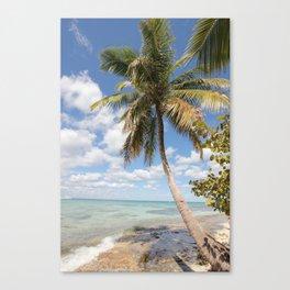 Isla Saona - Palm Tree at the Beach Canvas Print