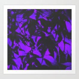 Midnight Japanese Maples Art Print