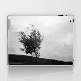 Dartmoor Tree Laptop & iPad Skin