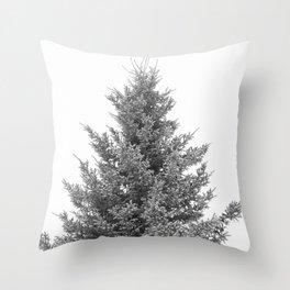B&W White Spruce Throw Pillow