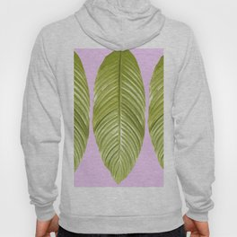 Three large green leaves on a pink background - vivid colors Hoody